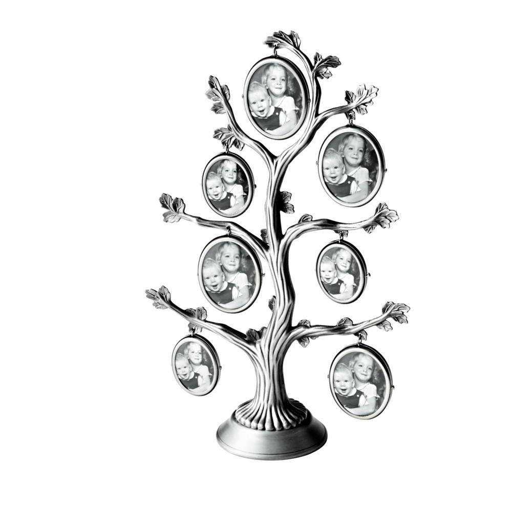Sukupuu, kehykset